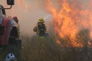 Wildland Firefighting Training - June 2013